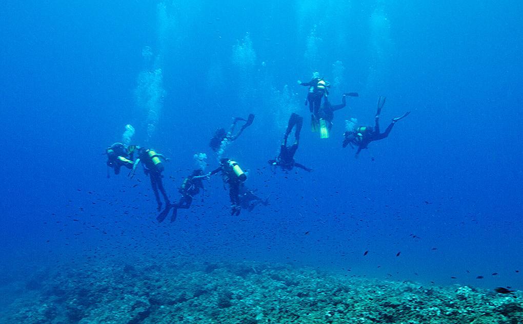 El submarinismo la nueva pasión de Mireia Sanz
